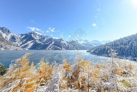 新疆天山雾凇图片