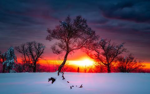 冬天雪景风光图片