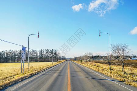日本北海道十胜农场公路图片