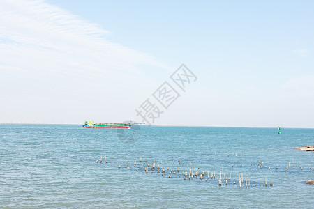 海上货轮图片