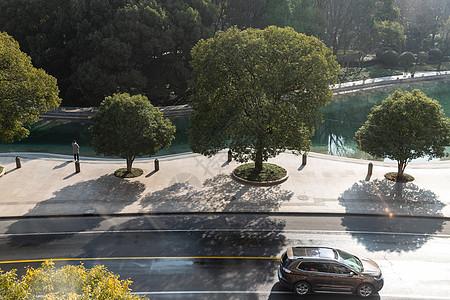 城市公园旁的道路图片