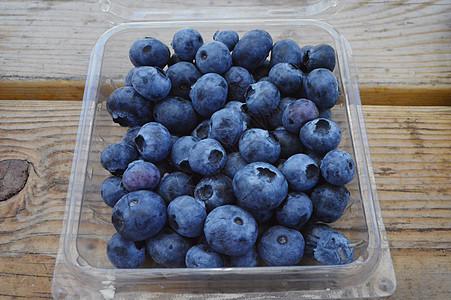 美国蓝莓图片