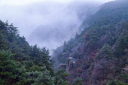 云雾中的庐山图片