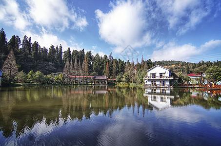 森林湖泊倒影图片