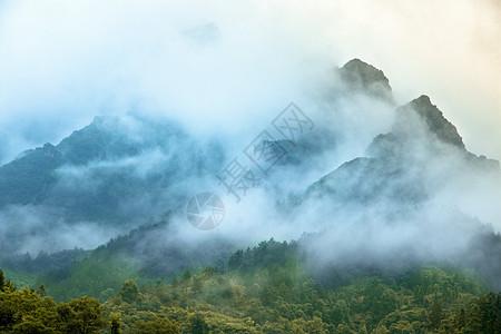 云雾缭绕的张家界图片