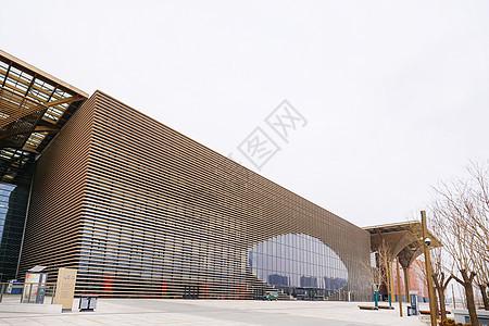 天津滨海图书馆全景图片