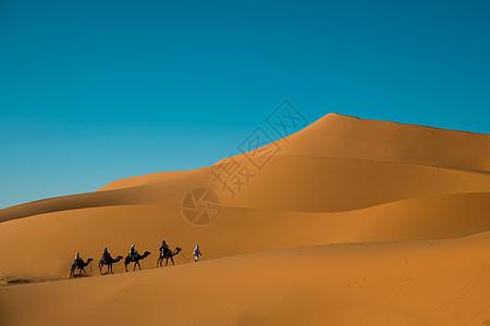 沙漠中前进的驼队图片