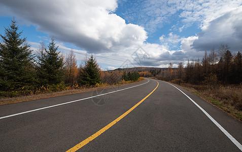 秋天路面风景图片