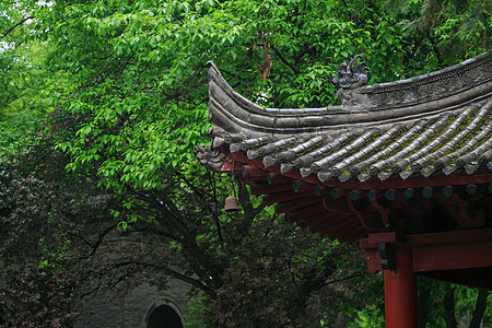 雨中小雁塔景区亭子图片