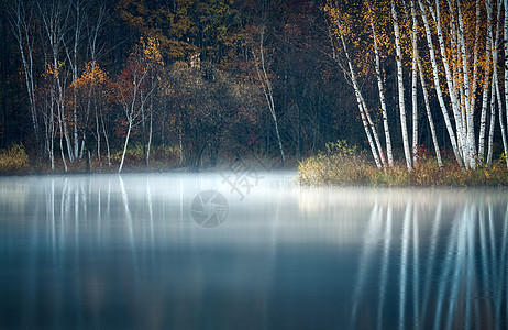 在水一方风景图片