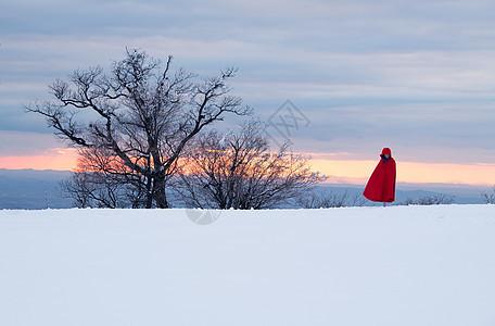 冬日暖阳雪景图片