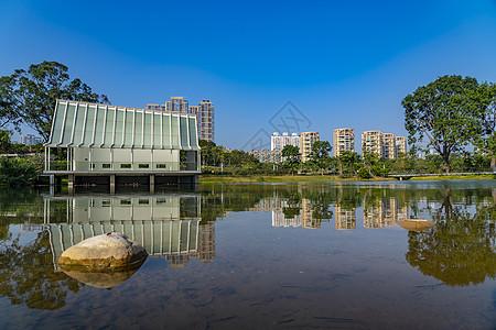 深圳香蜜公园城市图片