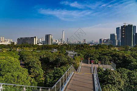 深圳香蜜公园景观图片