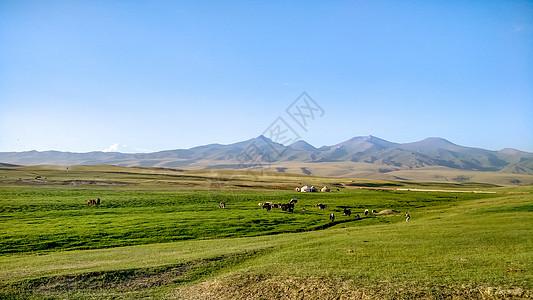 新疆那拉提草原风光图片