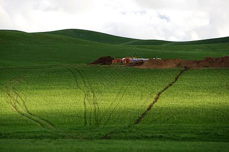 内蒙古大草原车印图片