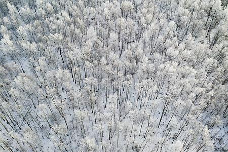 航拍雾凇岭图片