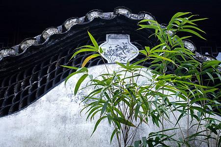 豫园墙头的竹子图片