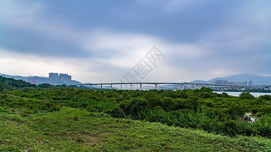 澳门莲花大桥的美景图片