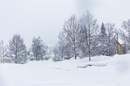北极圈挪威冬季雪景图片