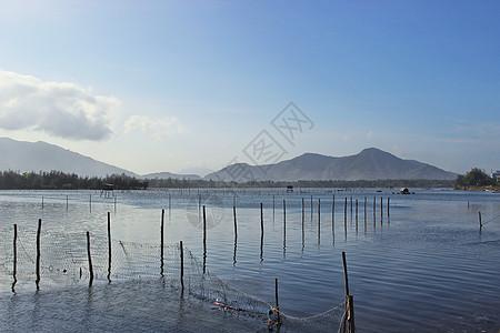 越南岘港水产养殖场图片
