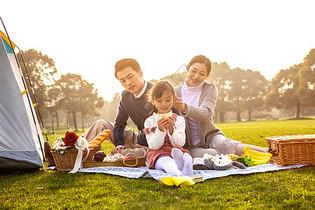 一家人欢乐地在草坪野餐图片