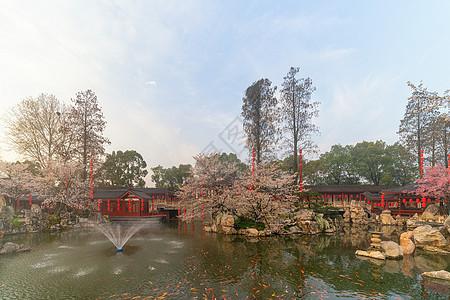 观赏金鱼的公园湖景连廊图片