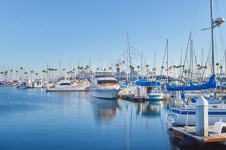 美国游艇码头图片