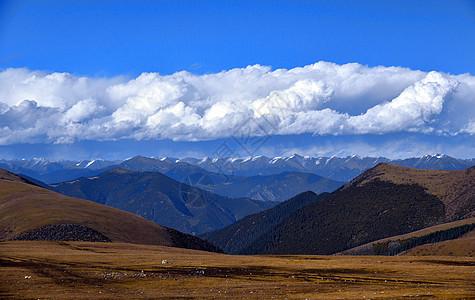 318国道卡子拉山风光图片