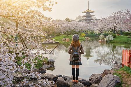 清晨欣赏樱花园美丽风景的女生图片