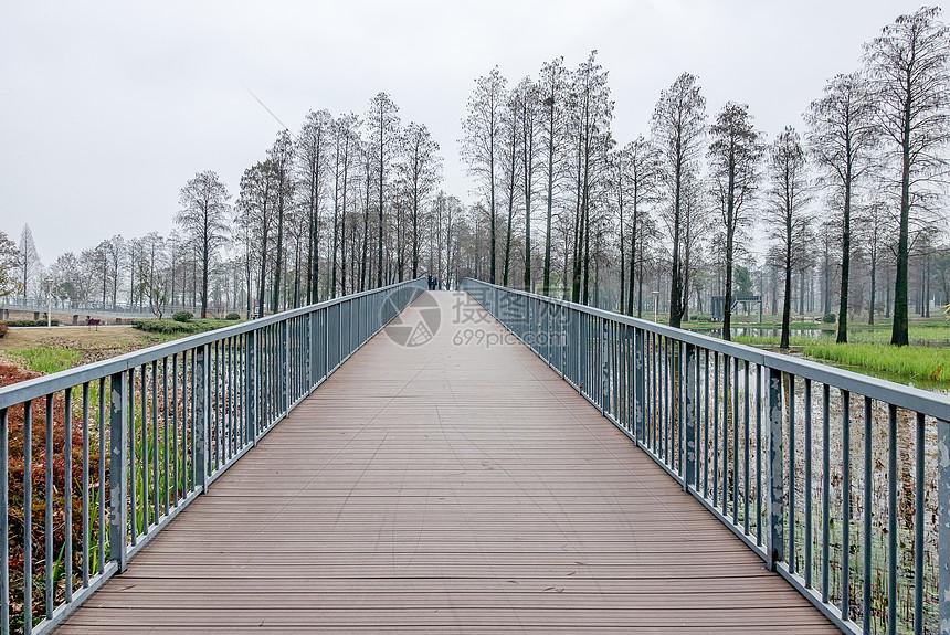 城市绿道湿地公园栈道图片