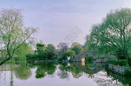上海辰山植物园图片