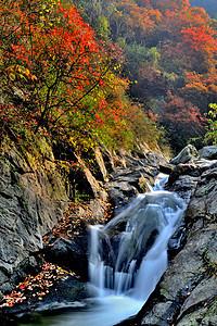 金龙峡秋景风光图片