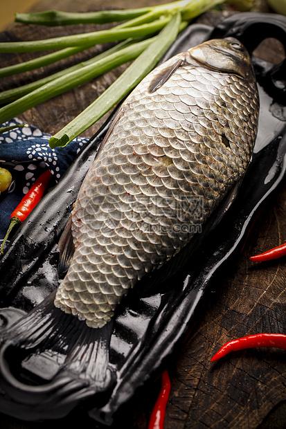 新鲜鲫鱼图片