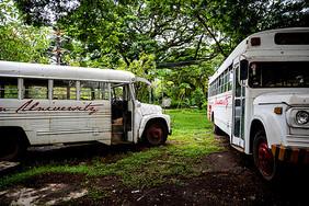 白色巴士图片