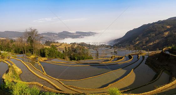 云雾中的梯田图片