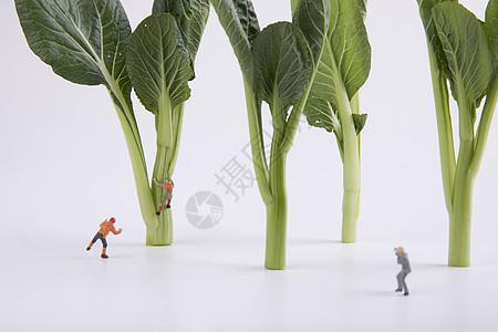 蔬菜创意小人图片
