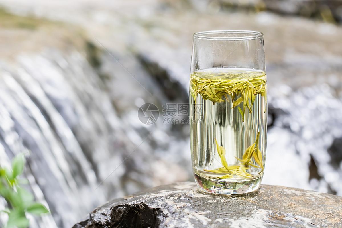 白茶什么煮好喝_白茶知识