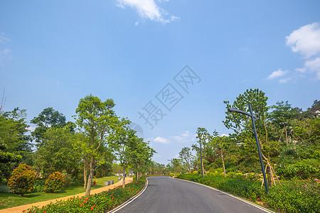 园林小道图片