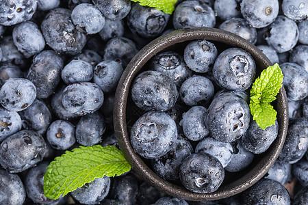 蓝莓静物棚拍图片