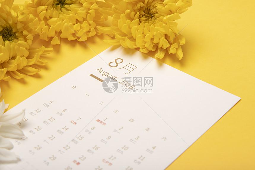 八月日历菊花图片