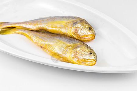 野生黄花鱼图片