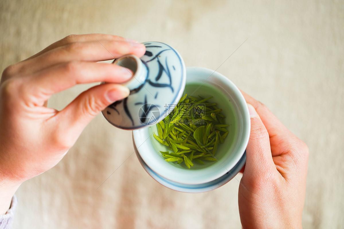 中茶白茶白牡丹