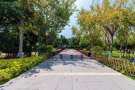 公园绿化图片