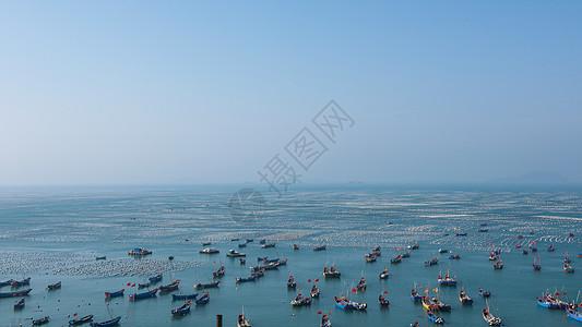 海上养殖图片