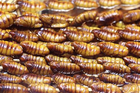 云南昆虫宴图片