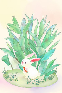 草丛里吃胡萝卜的萌萌哒小白兔图片