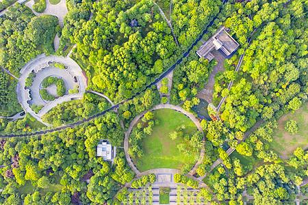 俯瞰城市森林公园绿化图片