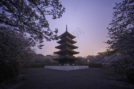 武汉东湖樱花园日出图片
