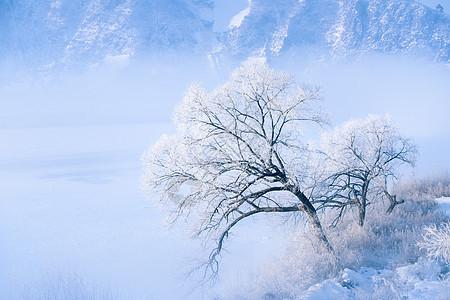 冬天雾凇图片