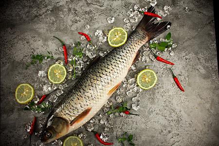 冰块上的草鱼图片